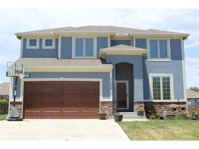 Grain Valley Single Family Home For Sale: 1102 NW Hickory Court