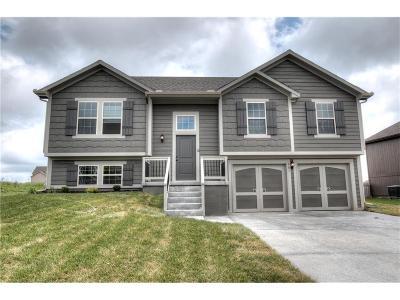 Kearney Single Family Home For Sale: 1504 Jules Court