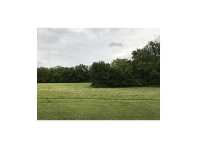 Clinton County Residential Lots & Land For Sale: Lot 9 Deer Run Lane