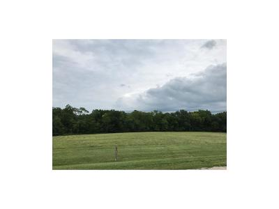 Clinton County Residential Lots & Land For Sale: 10ac Deer Run Lane