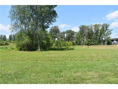 Buchanan County Residential Lots & Land For Sale: 13812 SW River Road