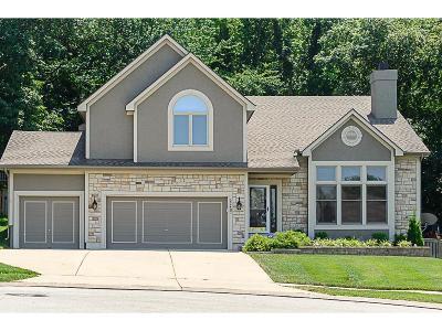 Johnson-KS County Single Family Home For Sale: 22407 W 45th Street