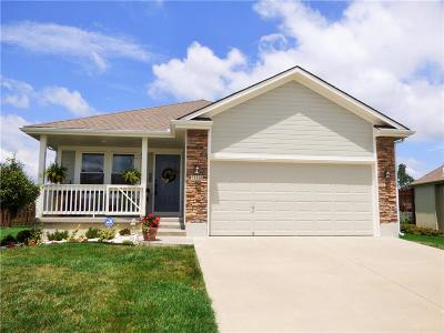 Raymore MO Single Family Home For Sale: $235,000