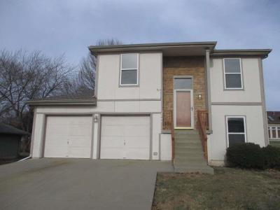 Kansas City MO Single Family Home For Sale: $145,000