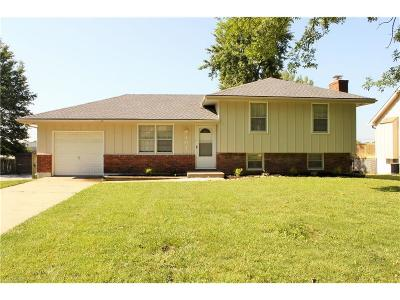 Lee's Summit MO Single Family Home Sold: $134,500