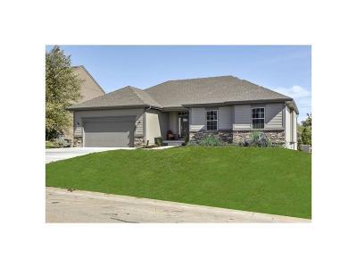 Johnson-KS County Single Family Home For Sale: 19360 W 208th Street