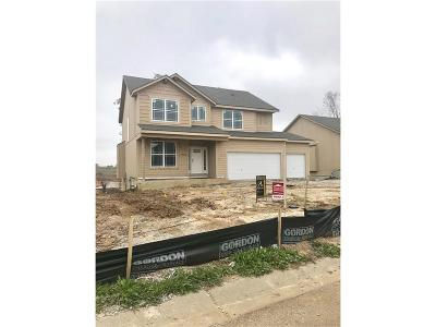 Shawnee Single Family Home For Sale: 5205 Meadow View Drive