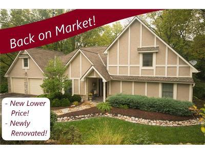 Lenexa Single Family Home For Sale: 19210 W 87th Lane