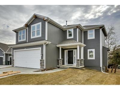 Olathe Single Family Home For Sale: 19593 W 121st Street