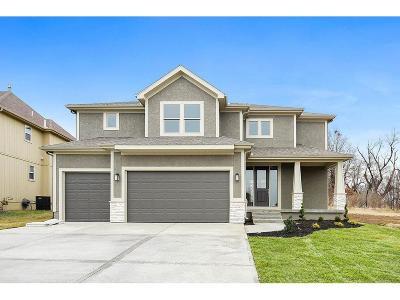 Olathe Single Family Home For Sale: 19730 W 120th Terrace