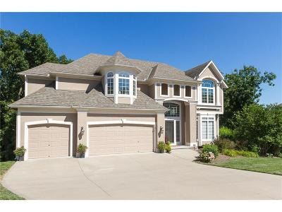 Lee's Summit Single Family Home Show For Backups: 5821 NE Holiday Drive