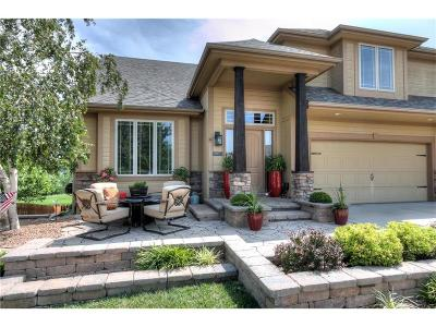 Smithville Single Family Home For Sale: 17817 Greyhawke Ridge Drive