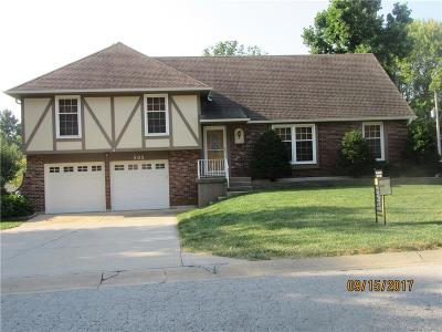Raymore MO Single Family Home For Sale: $177,500