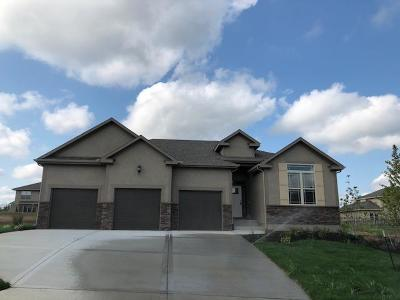 Shawnee Single Family Home For Sale: 20408 W 80th Street