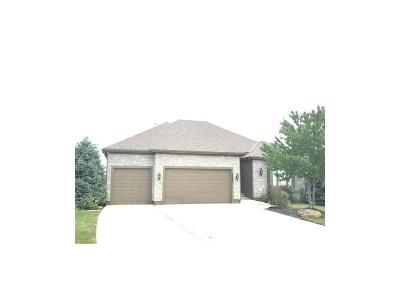 Johnson-KS County Single Family Home For Sale: 26021 W 143rd Place