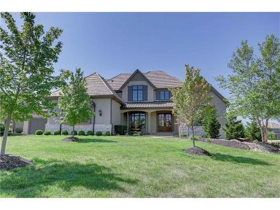 Overland Park Single Family Home For Sale: 11419 W 161st Terrace