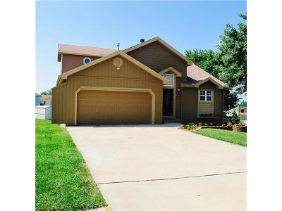 Raymore MO Single Family Home Show For Backups: $195,000