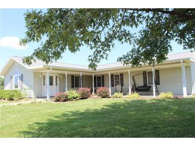 Knob Noster Single Family Home For Sale: 1039 SE 475 Road