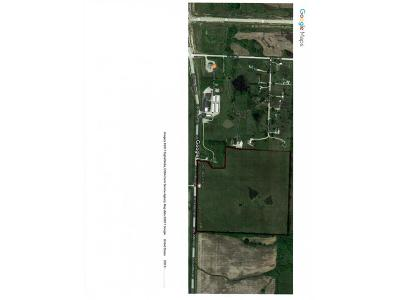 Warrensburg Residential Lots & Land For Sale: 357 SE Dd Highway