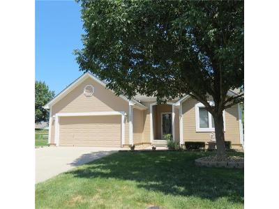 Raymore MO Single Family Home Show For Backups: $220,000