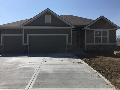 Kearney Single Family Home Contingent: 407 Jennifer Avenue