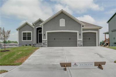 Lee's Summit MO Single Family Home Model: $324,000