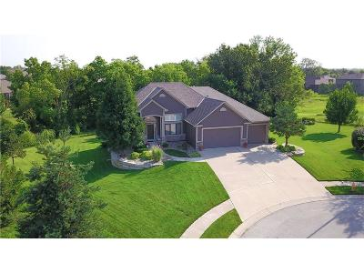 Raymore MO Single Family Home For Sale: $439,900