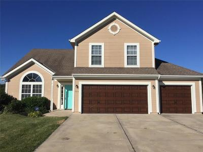 Raymore MO Single Family Home For Sale: $239,000