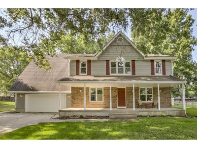 Blue Springs Single Family Home For Sale: 428 Manor Street
