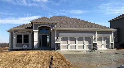 Single Family Home For Sale: 9929 N Richmond Avenue