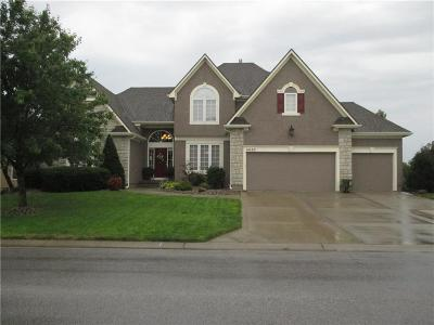 Single Family Home For Sale: 14105 Belrive Circle
