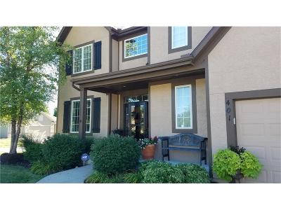 Louisburg Single Family Home For Sale: 401 Lakeview Drive