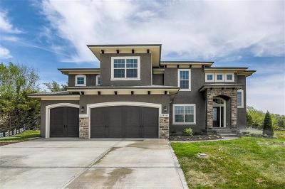 Lenexa Single Family Home For Sale: 23998 W 97th Terrace