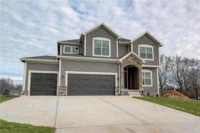 Raymore MO Single Family Home For Sale: $339,900