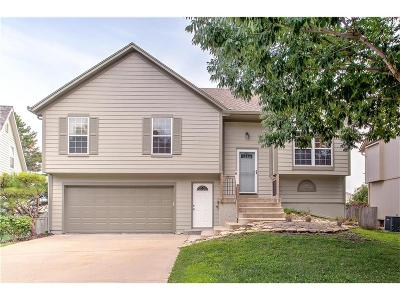 Shawnee Single Family Home For Sale: 12717 W 61st Terrace