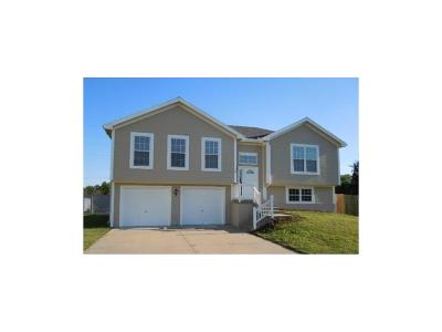 Belton MO Single Family Home For Sale: $164,900