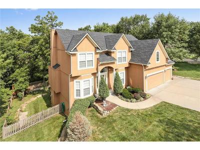 Single Family Home For Sale: 8427 Frederick Court