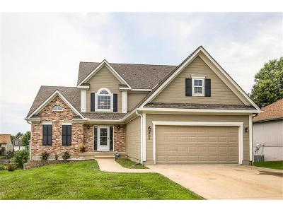 Raymore MO Single Family Home For Sale: $215,000