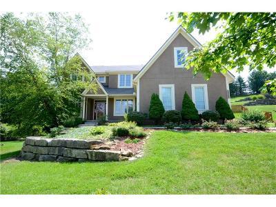 Shawnee Single Family Home For Sale: 14123 W 54 Street
