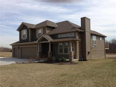Kearney Single Family Home For Sale: 1205 Stonecrest Court