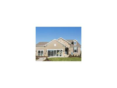 Lee's Summit MO Single Family Home Model: $357,980