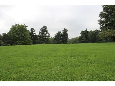 Ray County Residential Lots & Land For Sale: 1503 Shirkey Avenue