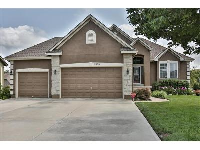 Raymore MO Single Family Home For Sale: $275,000