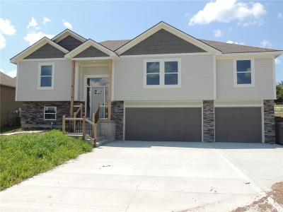 Blue Springs Single Family Home For Sale: 2325 NE 23rd Terrace