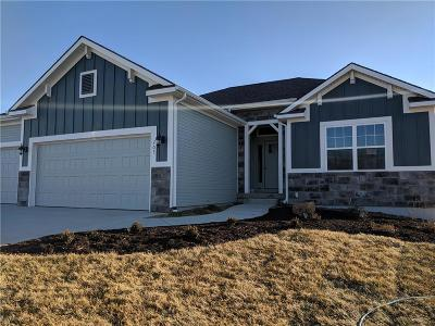 Smithville Single Family Home For Sale: 705 Eagle Court