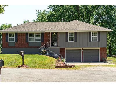 Lenexa Single Family Home For Sale: 24003 W 86th Terrace