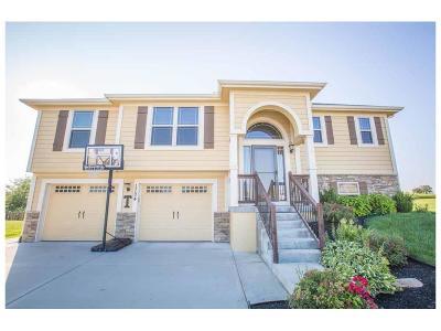 Smithville Single Family Home For Sale: 1704 NE 197th Court