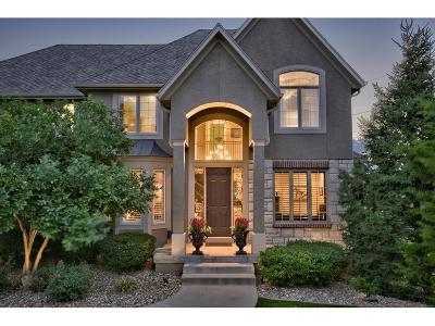 Overland Park Single Family Home For Sale: 9700 W 145th Terrace