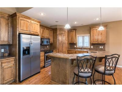 Lenexa KS Single Family Home For Sale: $379,000