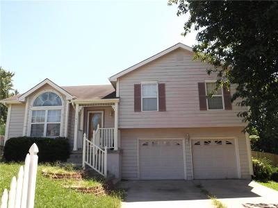 Raymore MO Single Family Home For Sale: $101,000